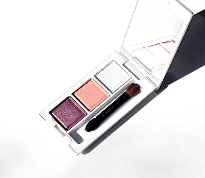 Suqqu Eye Colour Palette Bordeaux EX01 Review, Swatch and FOTD