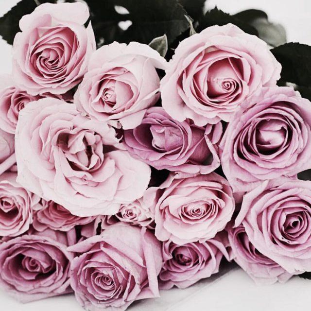 Happy weekend #blooms #lifestyleblogger